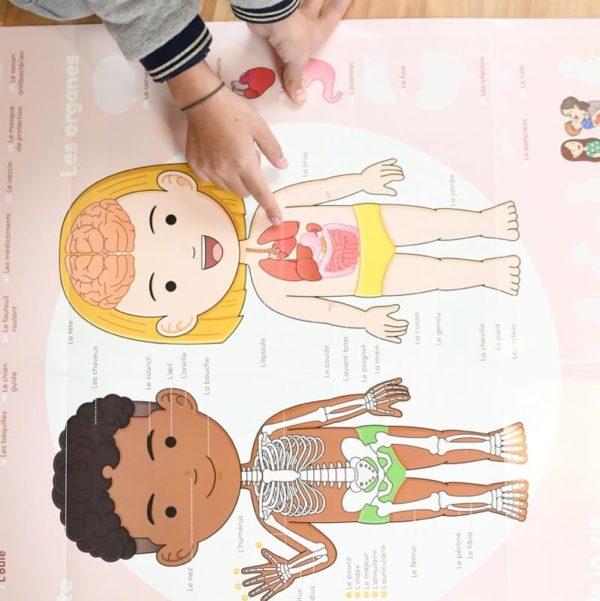 poster human body