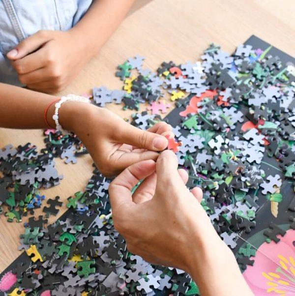 puzzle educatif 1000 pieces